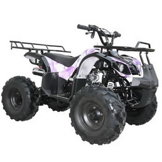 Coolster ATV-3125XR8(S)