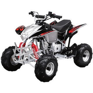 237 taotao atvs parts  at bakdesigns.co