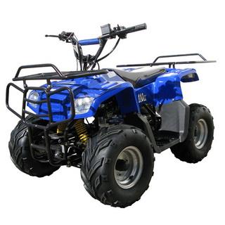 NST ATV-110HM