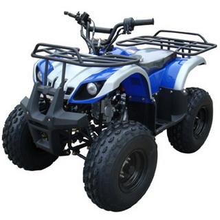 NST ATV-110HW