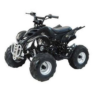 318 taotao atvs parts  at mifinder.co