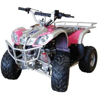 MotoBravo ATV 110 LCD6