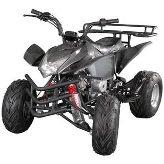 MotoBravo ATV 110 DN
