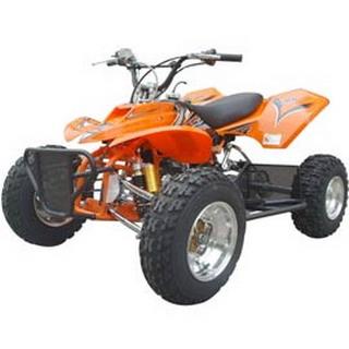 Tomoto ATV125S
