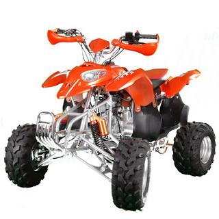 MotoBravo ATV 125 PL