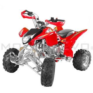 MotoBravo ATV 125 TPS