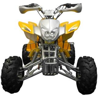 MotoBravo ATV 200 TPS