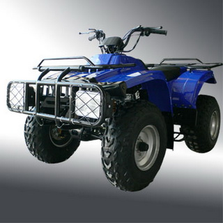 EAGLE 250 UTILITY