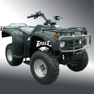 EAGLE 250 UTILITY CR