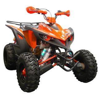 MotoBravo ATV 250 SS