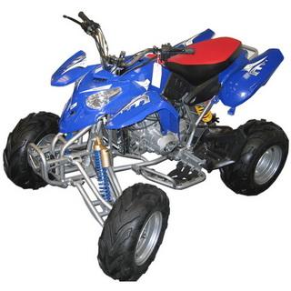 MotoBravo ATV 250 PL