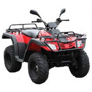 MotoBravo ATV 300 BY