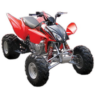 MotoBravo ATV 300 XY