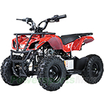 "ATV-F025 60cc Kids ATV with Automatic Transmission, Electric Start! Hydraulic Brakes, LED Headlights! 6"" Tires!"