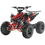 "ATV-G005 125cc ATV with Automatic Transmission w/Reverse, Electric Start, Big 19""/18"" Tires!"