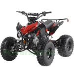 "Apollo Blazer 9 125cc ATV with Automatic Transmission w/Reverse, Electric Start, Big 19""/18"" Tires!"