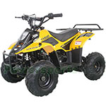 Fully Assembled and Tested! Vitacci Hawk 110cc ATV with Automatic Transmission, Electric Start, Rear Rack!