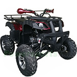 "Fully Assembled and Tested! Vitacci Cougar UT 200 ATV with Automatic Transmission w/Reverse, Electric Start! Big 21""/20"" tires"