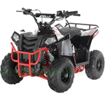 "Fully Assembled and Tested! Apollo Mini Commander 110cc ATV with Automatic Transmission, 6"" Tires, Electric Start!"