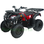 "Pentora 150cc Utility ATV with Automatic Transmission w/Reverse, Big 20""/19"" Wheels!"