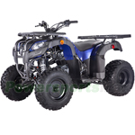 "Vitacci Pentora 250cc Utility ATV with Manual Transmission w/Reverse, Electric Start, Big 20""/19"" Tires!"