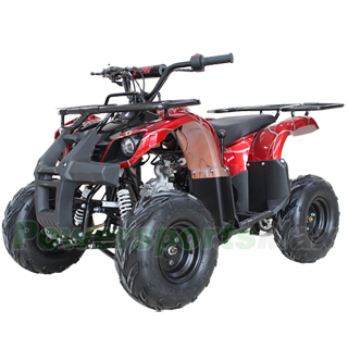 X-PRO Eagle 125cc ATV with Automatic Transmission w/Reverse