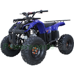 "X-PRO Hawk 125cc ATV with Automatic Transmission w/Reverse, Electric Start, Remote Control, Big 19""/18"" Tires! Zongshen Brand Engine!"