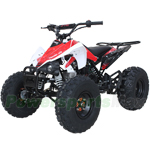 "X-PRO Thunder 125cc ATV with Automatic Transmission w/Reverse, Electric Start, Remote Control, Big 19""/18"" Tires! Zongshen Brand Engine!"