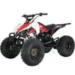 "X-PRO Thunder 125cc ATV with Automatic Transmission w/Reverse, Electric Start, Remote Control, Big 19""/18"" Tires!"