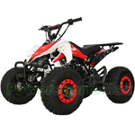 "X-PRO Thunder 125cc ATV with Automatic Transmission w/Reverse, Remote Control, LED Head and Tail Lights! Big 19""/18"" Tires!"