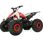 "X-PRO Thunder 125cc ATV with Automatic Transmission w/Reverse, Remote Control, LED Head and Tail Lights! Big 20""/18"" Tires!"