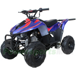 "X-PRO Thunder 110cc ATV with Automatic Transmission, Electric Start, 6"" Tires! Remote Control, Zongshen Brand Engine!"