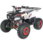 "ATV-H14 125cc ATV with Automatic Transmission w/Reverse, Electric Start, Remote Control, Big 19""/18"" Tires! LED Lights!"