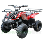 "ATV-X09 125cc Utility ATV with Automatic Transmission w/Reverse, Foot Brake and Remote Control! Big 16"" Tires!"