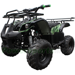 "Promax 125cc ATV with Automatic Transmission w/Reverse, Foot Brake and Remote Control! Big 16"" Tires!"