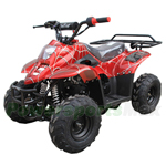 Coolster ATV-3050C 110cc ATV with Automatic Transmission, Foot Brake, Remote Control and Rear Rack!