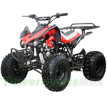 "ATV-X18 125cc Sports ATV with Automatic Transmission w/Reverse, Foot Brake, Metal Foot Rest! Remote Control! Big 19""/18"" Tires!"