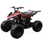 "ATV-J034 125cc Sports ATV with Semi-Automatic Transmission w/Reverse, Foot Brake, Remote Control! Big 19""/18"" Tires!"