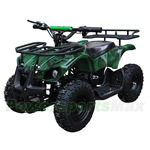 "ATV-L002-R732 350W Electric Kids ATV with Reverse and Selectable Speed Control! Disc Brake, 6"" Tires! High-Tensile Steel Frame, Refurbished, In Crate!"