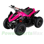 "ATV-L003 Mars 350W Electric Kids ATV with Selectable Speed Control! High-Tensile Steel Frame, 6"" Tires! Super Hot!"