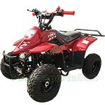 ATV-P001 110cc ATV with Automatic Transmission, Drum/Disk Brake! 145/70-6 Steel Tires!