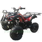 "ATV-P002 125cc ATV with Automatic Transmission w/Reverse, LED Headlights, Remote Control, Big 16"" Tires!"