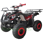 "X-PRO 125cc ATV with Automatic Transmission w/Reverse, LED Headlights, Remote Control, Big 16"" Tires!"