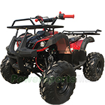 "ATV-P003 125cc ATV with Automatic Transmission w/Reverse,  LED Headlights, Remote Control! Big 19""/18""Tires!"