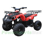 "ATV-T013 125cc ATV with Automatic Transmission w/Reverse, Foot Brake, Remote Control! Big 16"" Tires!"