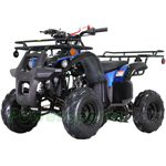 "ATV-T013 125cc ATV with Automatic Transmission w/Reverse, LED Headlights, Remote Control! Big 16"" Tires!"