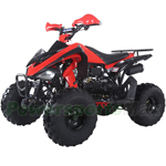 "Taotao ATA-150G 150cc Full Size Sports ATV with Automatic Transmission w/Reverse, Foot Brake! Big 21""/20"" Wheels!"