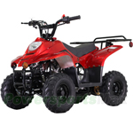 110cc Kids ATV with Automatic Transmission, Remote Control! Rear Rack!