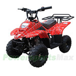 ATV-T039 110cc ATV with Automatic Transmission, Remote Control! Rear Rack!