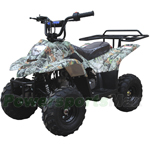 Promax 110cc ATV with Automatic Transmission, Remote Control! Rear Rack!